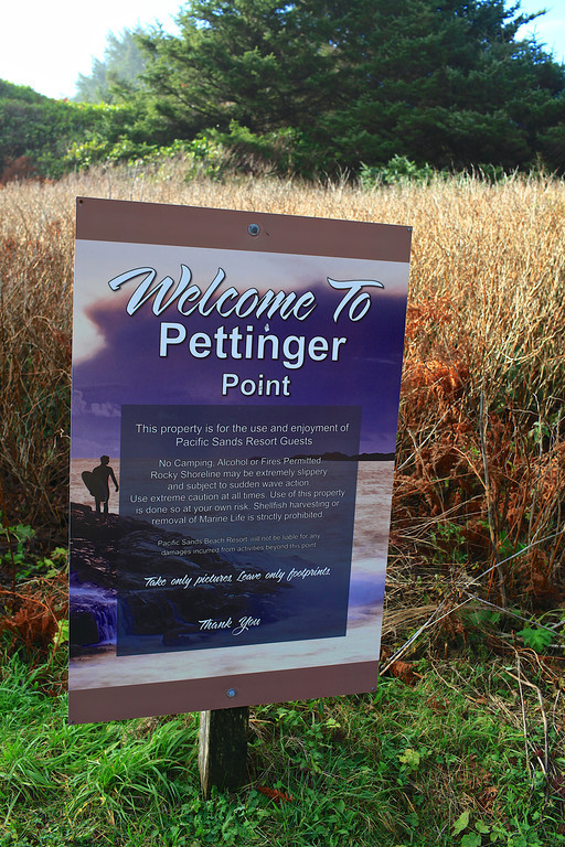 Just a short walk from the Long Beach Lodge is Pettinger Point.