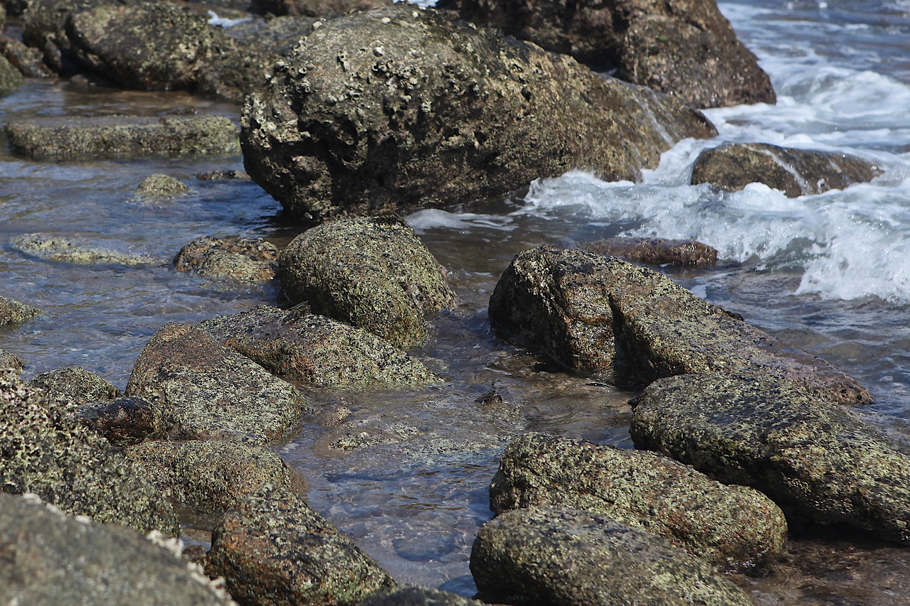 If you look very closely, you can find crabs that are the same color as the rocks in this picture.